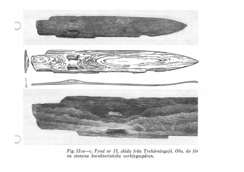 Bild ur Den bottniska ... .pdf